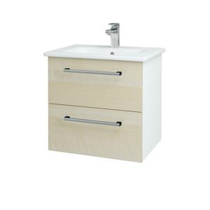 Dřevojas Koupelnová skříň GIO SZZ2 60 N01 Bílá lesk / Úchytka T03 / D02 Bříza 82805C
